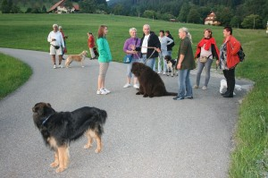 k-Schwarzwald 23-25.08.13 010 Seebach