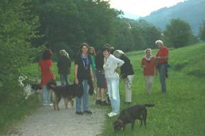 k-Schwarzwald 23-25.08.13 012 Seebach