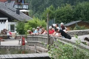 k-Schwarzwald 23-25.08.13 040 Triberg
