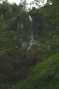 k-Schwarzwald 23-25.08.13 126 Wasserfälle Seebach