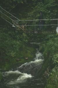 k-Schwarzwald 23-25.08.13 130 Wasserfälle Seebach