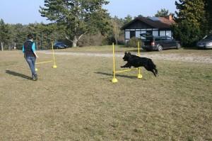 k-Training 8.3.2014 036_
