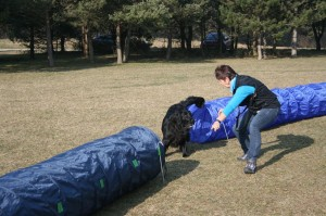 k-Training 8.3.2014 038
