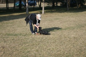k-Training 8.3.2014 060